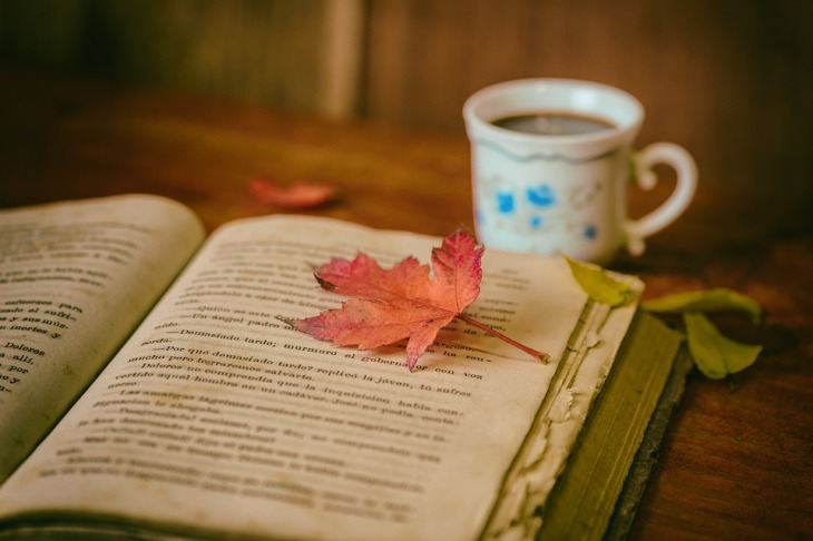 Book Cup Color Still Life Leaves Books Coffee